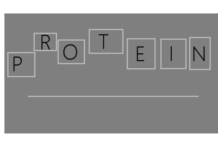 proteiner